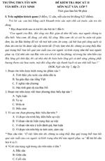 Đề kiểm tra học kì II lớp 7 môn Ngữ văn - THCS Tây Sơn, Tây Ninh (Đề 2) đề kiểm tra ngữ văn