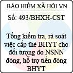 Công văn 493/2013/BHXH-CST tổng kiểm tra, rà soát việc cấp thẻ bảo hiểm y tế cho đối tượng do ngân sách nhà nước đóng, hỗ trợ tiền đóng bảo hiểm y tế