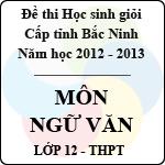 Đề thi học sinh giỏi tỉnh Bắc Ninh năm 2012 - 2013 môn Ngữ văn lớp 12 (Có đáp án) đề thi học sinh giỏi