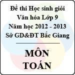 Đề thi học sinh giỏi Văn hóa lớp 9 tỉnh Bắc Giang năm học 2012 - 2013 môn Toán - Có đáp án sở gd&đt bắc giang