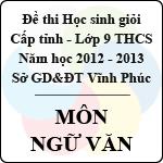 Đề thi học sinh giỏi lớp 9 THCS tỉnh Vĩnh Phúc năm 2013 môn Ngữ văn - Có đáp án sở gd&đt vĩnh phúc