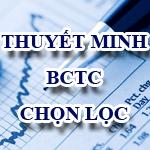 Thuyết minh báo cáo tài chính chọn lọc theo thông tư số 175