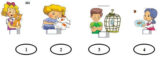 Đề kiểm tra học kì hai môn Tiếng Anh lớp 3
