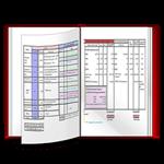 Mẫu báo cáo tài chính cho doanh nghiệp nhỏ và vừa biểu mẫu kế toán